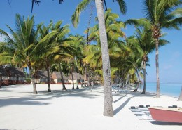 Aitutaki Lagoon Resort & Spa Cook Islands - Premium Beachfront Bungalows