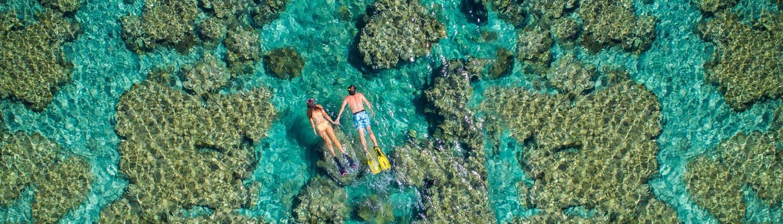 The Havannah, Vanuatu - Snorkelling