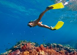 Sheraton Resort & Spa Tokoriki Island Fiji - Snorkeling