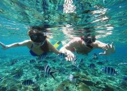 Tropica Island Resort Fiji - Snorkelling
