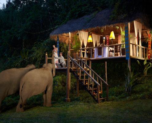 Anantara Golden Triangle Chiang Rai - Elephant Camp