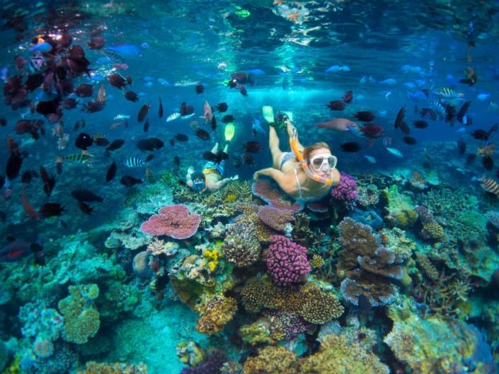 Efate - Snorkelling Reef